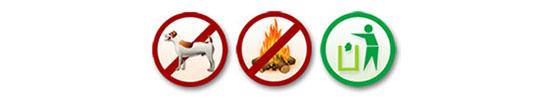 No dog / No campfire